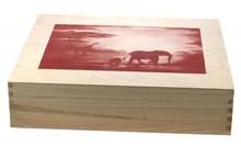 """Houten 4-vaks themakisten met thema """"African Way"""" (afmeting buitenmaat 446 x 393 x 103 mm, voorzien van losse houten tussen schotjes)"""