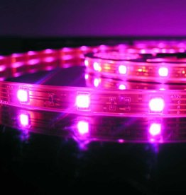 LED Strip RGB Waterdicht 30 LEDs/m per 50cm
