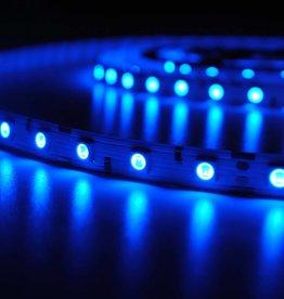 LED en bande 5050 60 LED/m Bleu - par 50cm