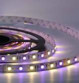 LED Strip RGB-WW 60 LED/m Flexible - per 50cm