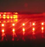 Rojo 60 LED / m completa