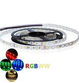 LED Strip RGB-WW Single-Chip 96 LED/m Flexible - per 50cm