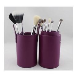 Sibel Case 12 brushes