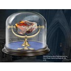 HP - Sorcerer's Stone Replica
