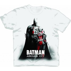 Batman Arkham City T/S Harley Points
