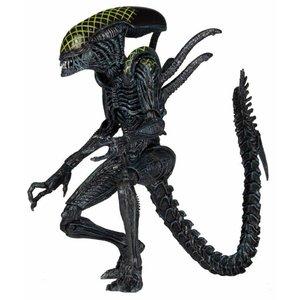Aliens Series 7 Action Figures - AvP Grid Alien