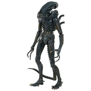 Aliens Action Figure 1/4 1986 Warrior 56 cm