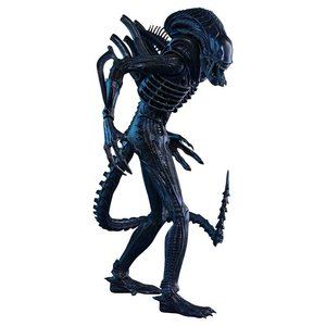 Aliens Movie Masterpiece Action Figure 1/6 Alien Warrior 35cm