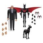 Batman Beyond Action Figure 3-Pack