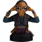 Star Wars Episode VII Bust 1/6 Maz Kanata