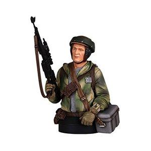 Star Wars Bust 1/6 Endor Trooper