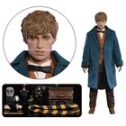 Fantastic Beasts My Favourite Movie Action Figure 1/6 Newt Scamander