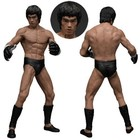 The Bruce Lee Martial Artist Series No. 2 1/12 Statue Bruce Lee (MMA Iconic Outfit)