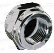 Pingel gas tank adaptor nut