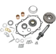 Starter  kick rebuild kit
