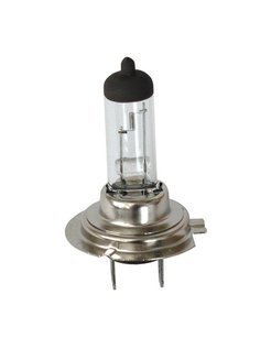 H7 bulb, 55 Watt, single beam
