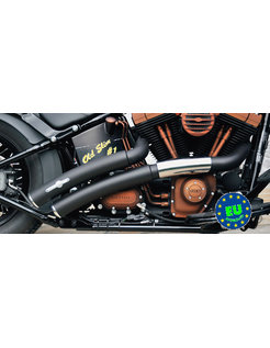 exhaust EURO 3 approved HOT SHOT model Rainbow Flatside Fits:> 1984 2017 Softail except FXCW FXCWC and FXSB