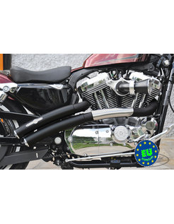 exhaust EURO 3 approved HOT SHOT model Rainbow Flatside Fits:> 2004-2013 Sportster XL