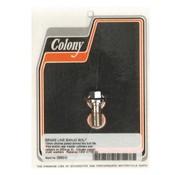 Colony Hohlschrauben - Chrom, 100 mm * 1,25