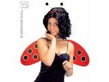 Carnival-accessory: ladybug set