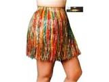 Carnival-costumes:  Hawaiiskirts