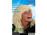 Carnival- & Party- accessories:  Wig Dieter