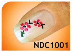 smART nails NDC1001