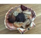 Coquille in de schelp/zwarte risotto/cepes/schorseneer