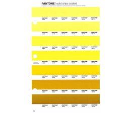 Pantone PMS Solid Chips vervangingspagina op coated papier 9C, kleurnummers 120C - 121C - 122C - 123C - 124C - 125C - 126C