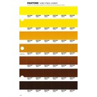 Pantone PMS Solid Chips coated pagina 10C