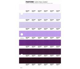 Pantone PMS Solid Chips vervangingspagina op coated papier 102C, kleurnummers 7443C - 7444C - 7445C - 7446C - 7447C - 7448C - 7449C