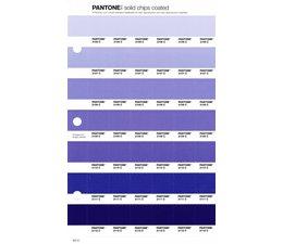 Pantone PMS Solid Chips vervangingspagina op coated papier 107C, kleurnummers 2106C - 2107C - 2108C - 2109C - 2110C - 2111C - 2112C