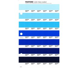 Pantone PMS Solid Chips vervangingspagina op coated papier 133C, kleurnummers 2905C - 2915C - 2925C - 2935C - 2945C - 2955C - 2965C