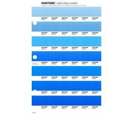 Pantone PMS Solid Chips vervangingspagina op coated papier 134C, kleurnummers 2169C - 2170C - 2171C - 2172C - 2173C - 2174C - 2175C