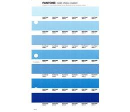 Pantone PMS Solid Chips vervangingspagina op coated papier 144C, kleurnummers 2204C - 2205C - 2206C - 2207C - 2208C - 2209C - 2210C
