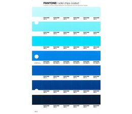 Pantone PMS Solid Chips vervangingspagina op coated papier 146C, kleurnummers 304C - 305C - 306C - Process Blue C - 307C - 308C - 309C