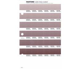 Pantone PMS Solid Chips vervangingspagina op coated papier 246C, kleurnummers Warm Gray 6C - Warm Gray 7C - Warm Gray 8C - Warm Gray 9C - Warm Gray 10C - Warm Gray 11C