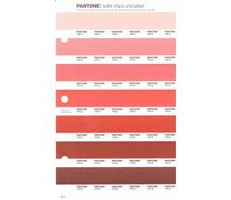 Pantone PMS Solid Chips vervangingspagina op uncoated papier 29U, kleurnummers 169U - 170U - 171U - 172U - 173U - 174U - 175U