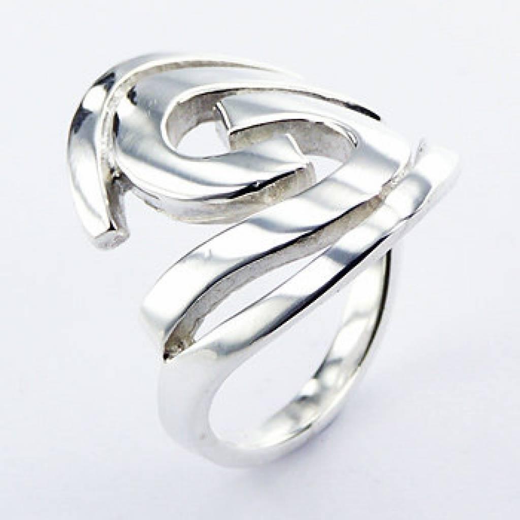 grote zilveren ringen dames