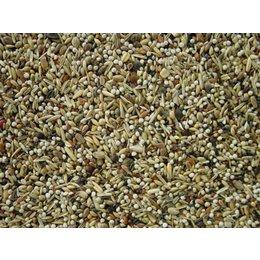 Koenings European Goldfinch-Siskin no. 2 (5 kg)