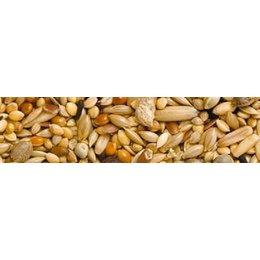 Teurlings 229 - Agapornide and Neophema mixture (20 kg)