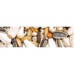 Teurlings 250 - Papegaai zonder pinda's (15 kg)