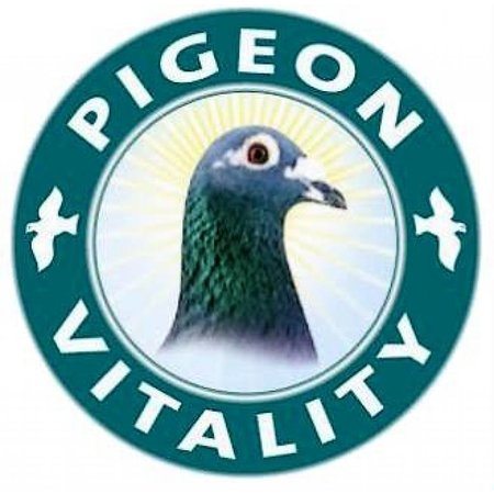 Pigeon Vitality Improver (125 gr)
