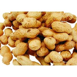 Peanut In Cap (500 gr.)