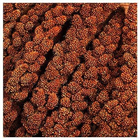 Chinesische Millet rot (1 kg)