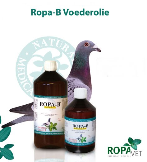 Image result for ropa oregano oil