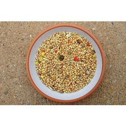 Slaats Parakeets Seed with colored grain (2,5 kg)