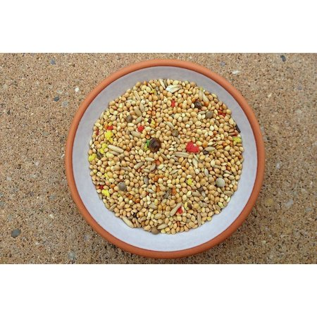 Slaats Sittiche Seed mit FarbeKorn (2,5 kg)