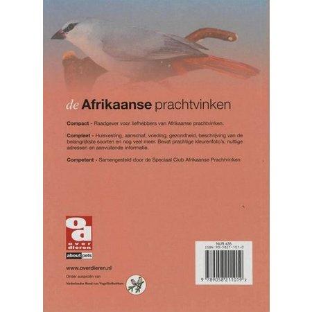 Afrikanischen Finken