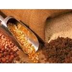 Ernährung (Saatgut und Pellets)